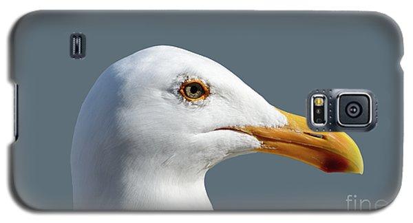 Pretty Western Gull In Profile Galaxy S5 Case