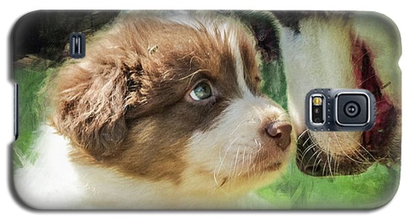 Puppy Dog Galaxy S5 Case