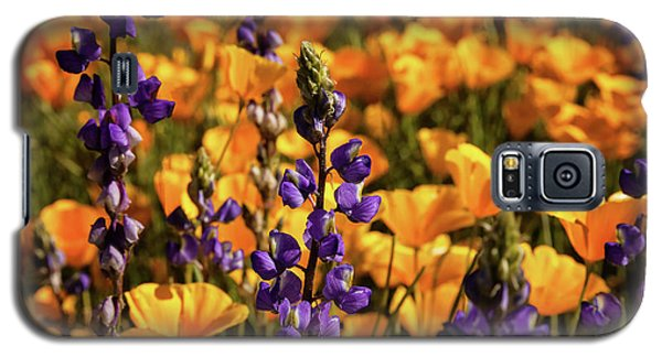 Purple And Gold Galaxy S5 Case