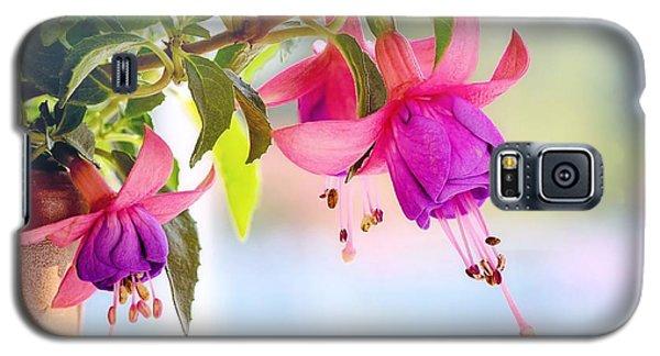 Purple Flowers Galaxy S5 Case