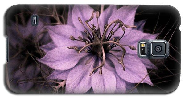 Purple Peculiarity Galaxy S5 Case