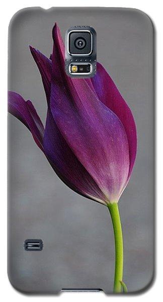 Purple Tulip Galaxy S5 Case