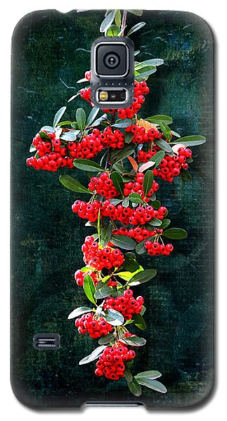 Pyracantha Berries - Do Not Eat Galaxy S5 Case