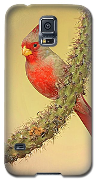 Pyrrhuloxia-filter Galaxy S5 Case