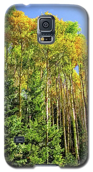 Quaking Aspens Galaxy S5 Case