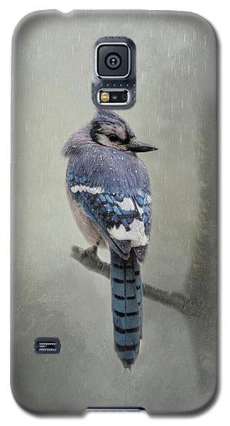 Rainy Day Blue Jay Galaxy S5 Case