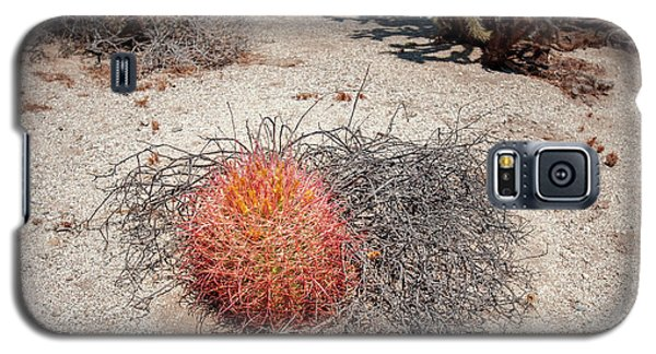 Red Barrel Cactus And Mesquite Galaxy S5 Case