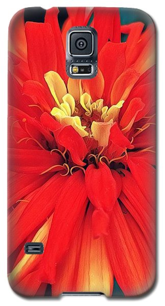 Red Bliss Galaxy S5 Case