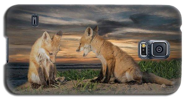 Red Fox Kits - Past Curfew Galaxy S5 Case