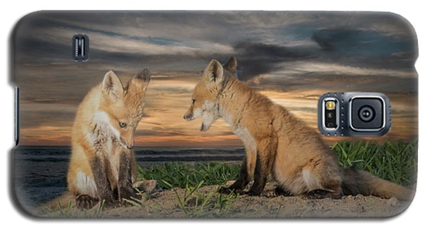 Red Fox Kits - Past Curfew Galaxy S5 Case