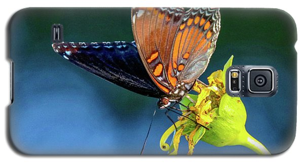 Red-spotted Purple Butterfly Galaxy S5 Case