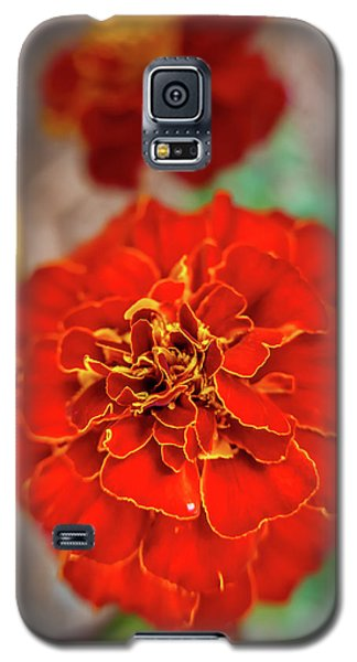 Red Summer Flowers Galaxy S5 Case