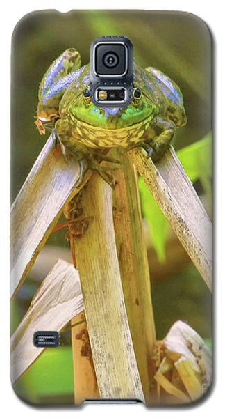 Reeds Bully Galaxy S5 Case