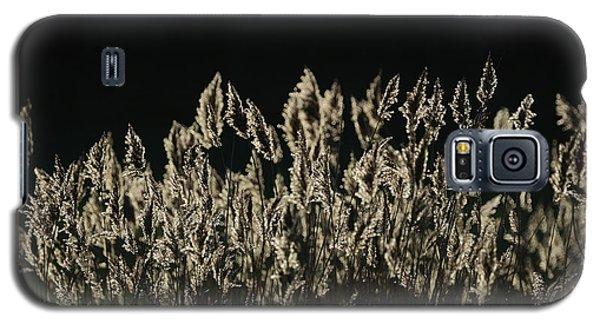 Reeds Galaxy S5 Case