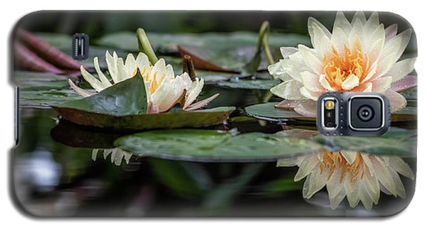 Reflected Elegance Galaxy S5 Case