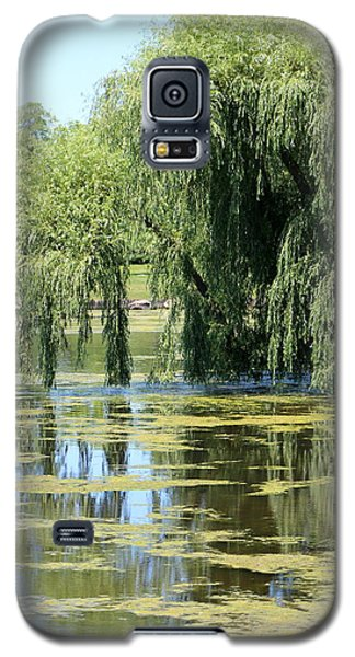 Reflections From Mother Willow Galaxy S5 Case
