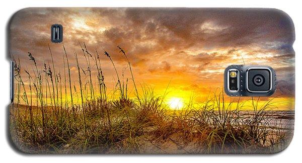 Rennaissance  Galaxy S5 Case