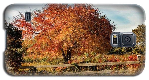 Rhode Island Audubon In Fall Colors Galaxy S5 Case