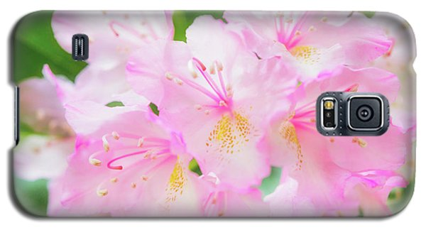 Rhododendron 4 Galaxy S5 Case