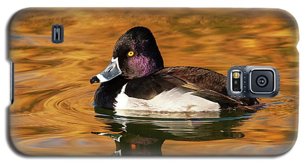 Ring-necked Duck Galaxy S5 Case