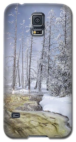 River Of Gold - Jo Ann Tomaselli Galaxy S5 Case