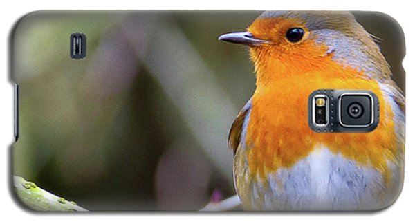 Robin. On Guard Galaxy S5 Case