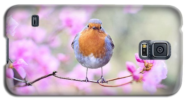Robin On Pink Flowers Galaxy S5 Case