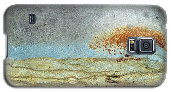 Rock Stain Abstract 1 Galaxy S5 Case