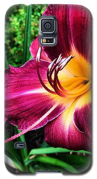 Rolling Galaxy S5 Case