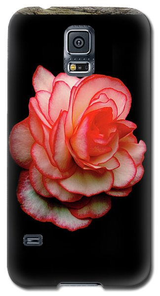 Galaxy S5 Case featuring the photograph Rose by Ben Upham III