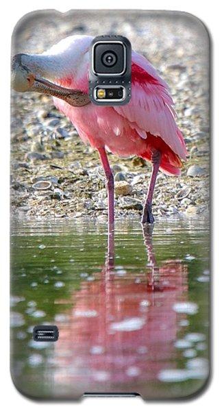 Roseate Spoonbil Galaxy S5 Case