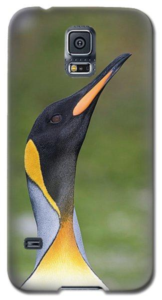 Royalty Galaxy S5 Case