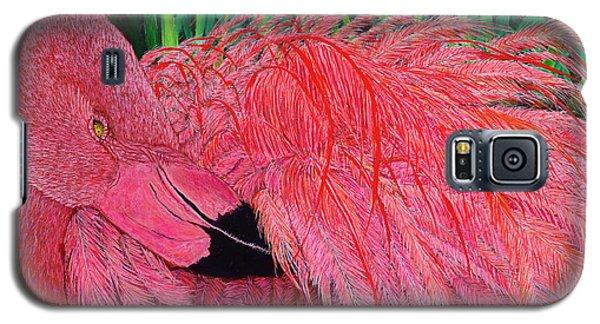 Ruffled Flamingo Galaxy S5 Case