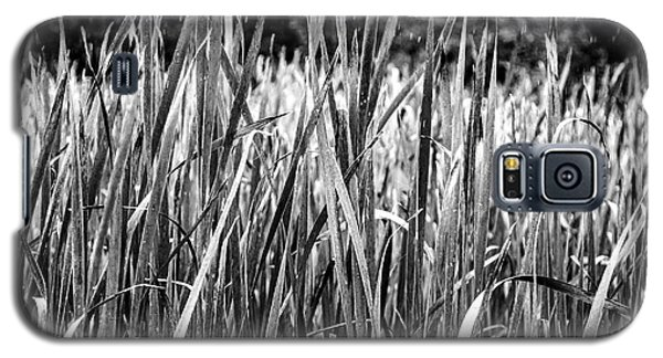 Rushes Rain Galaxy S5 Case