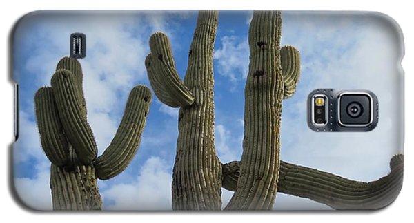 Saguaro Clique Galaxy S5 Case