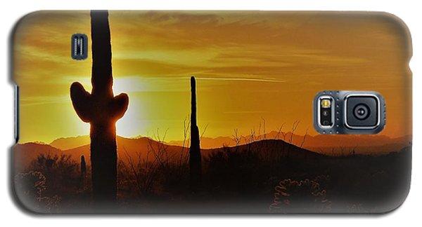 Saguaro Sunset Galaxy S5 Case