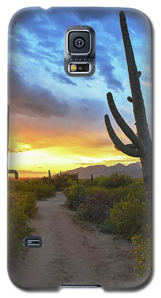 Saguaro Trail Galaxy S5 Case