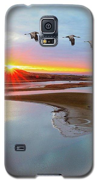 Sandhill Cranes At Scooteney Reservoir Wa Galaxy S5 Case
