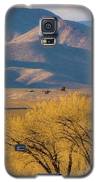 Sandhill Cranes Near The Bosque Galaxy S5 Case