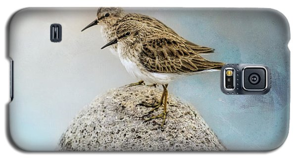 Sandpipers On A Rock Galaxy S5 Case