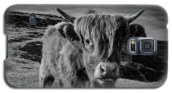 Saying Hello To A Highland Cow At Baslow Edge Black And White Galaxy S5 Case