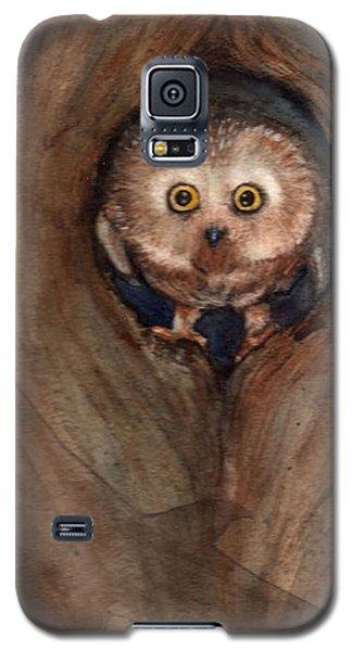 Scardy Owl Galaxy S5 Case