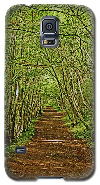Scotland. Killiecrankie. Path Through The Trees. Galaxy S5 Case