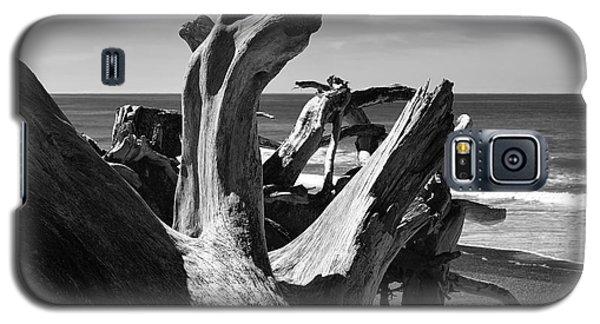 Sea Bones Galaxy S5 Case