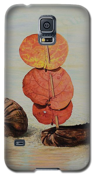 Sea Grape Sails Galaxy S5 Case