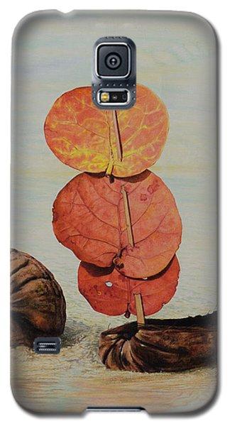 Sea Grape Sails Galaxy S5 Case