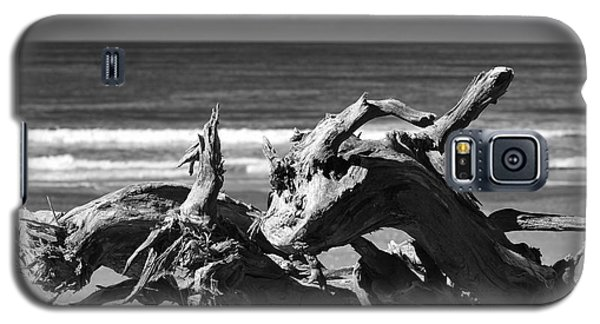 Sea Horses Galaxy S5 Case