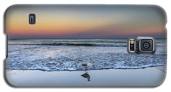 Seagull On The Beach Galaxy S5 Case