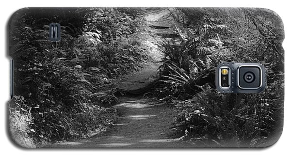 Secret Path Galaxy S5 Case