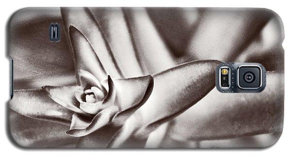 Sensual Succulent II Galaxy S5 Case